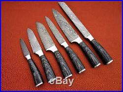 CUSTOM MADE DAMASCUS BLADE 6Pcs. CHEF/KITCHEN KNIVES SET DC 1049-6