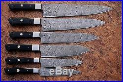 CUSTOM MADE DAMASCUS BLADE 6Pcs. CHEF/KITCHEN KNIVES SET DC 1071-H