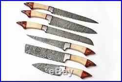 Damascus Blade Custom Made Unique Kitchen/chef Knife 6 Pc's Set Db 1061-6